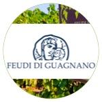Feudi di Guagnano Vini gds